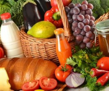 Agriculture & Food Processing Industry