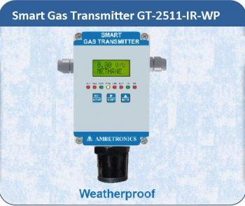 Smart Gas Transmitter GT-2511-IR-WP