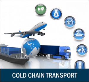temperature monitoring in cold chain logistics