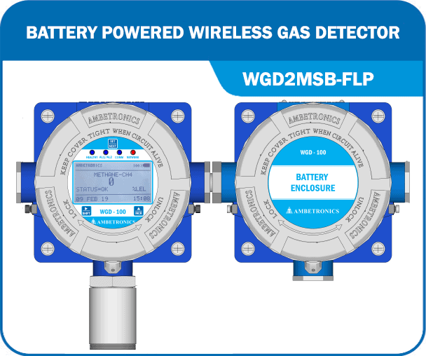 Battery Powered Wireless Gas Detector - WGD2MSB-FLP